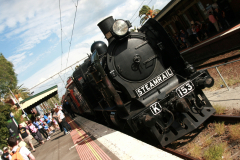 Steamrail Victoria K153 in Essendon