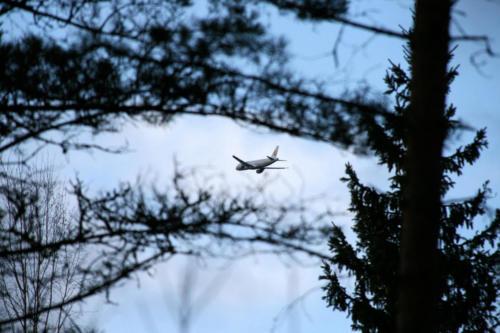 An airplane landing in Turku